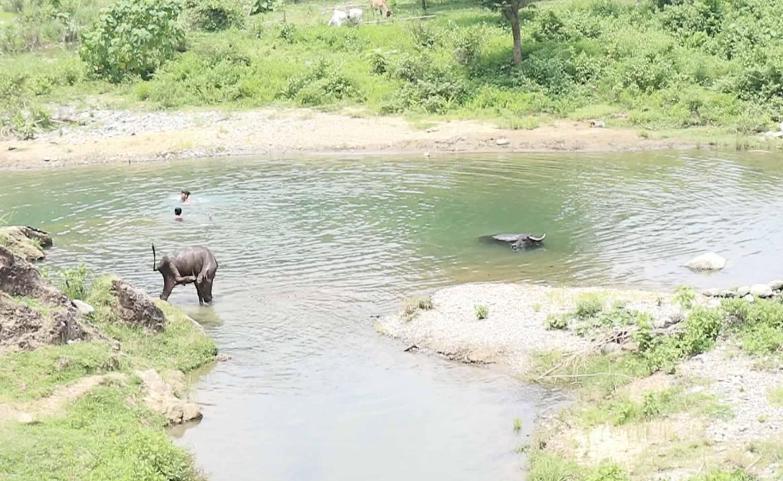 CCWIT: Quenching the water problem in Sal-lapadan Barangay